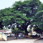La Plaza – Parque Guanacaste
