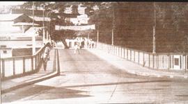 Puente Mallol