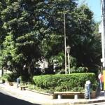 ¿Por qué se llama avenida Máximo Jerez?