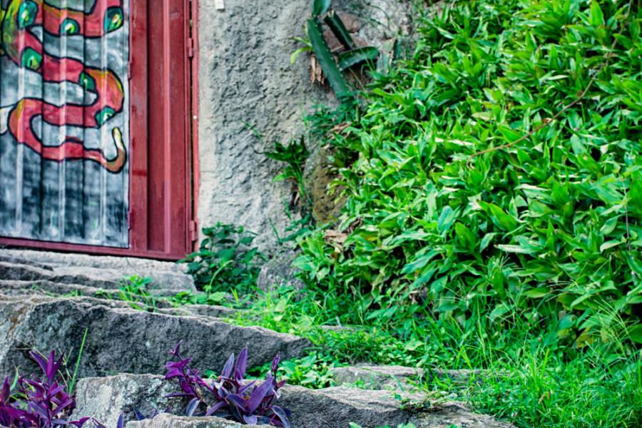 Entrada-Casa-bajand-de-La-Leona